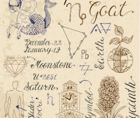 Capricorn or Goat zodiac sign vector