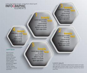 Gray hexagon graphics info vector