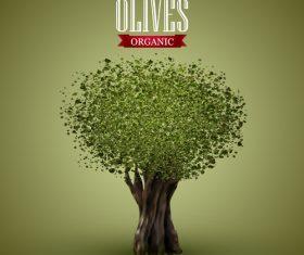 Olive tree vector