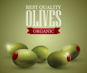 Premium olive vector