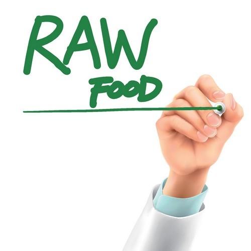 Raw food vector