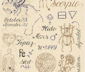 Scorpio or Scorpion zodiac sign vector