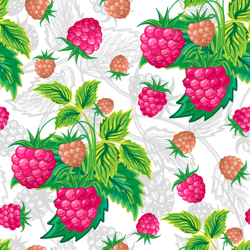 Seamless backgrounds with berries vector