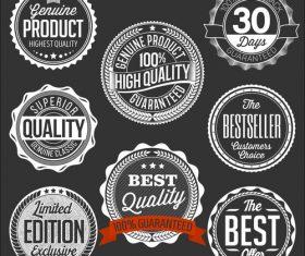 Set of vintage badges on black vector
