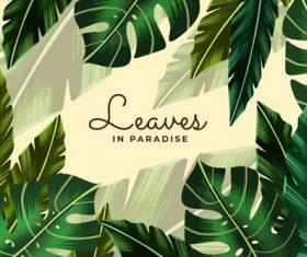 Travel paradise summer card vector
