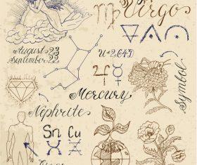 Virgin or Virgo zodiac sign vector