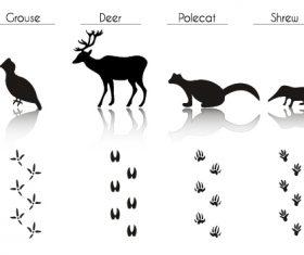 Wild animal literacy table vector