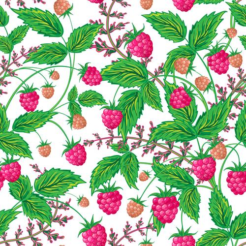 Wild berries seamless pattern vector