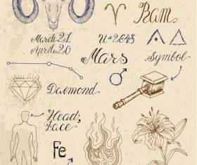 Zodiac sign Ram or Aries vector
