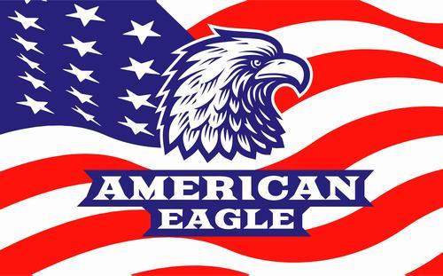 American eagle logo design vector