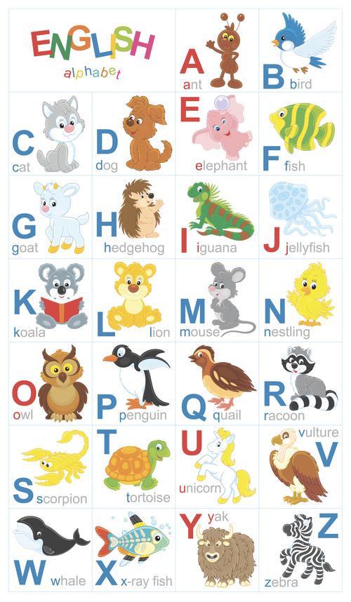 Animal english alphabet cartoon vector