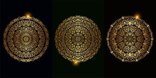 Beautiful mandala ornament vector