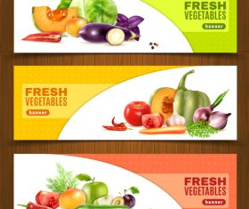 Different kinds of fresh fruits and vegetables banner vector