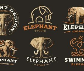 Elephant studio logo design vector
