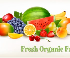 Food background with colorful organic fruits vector