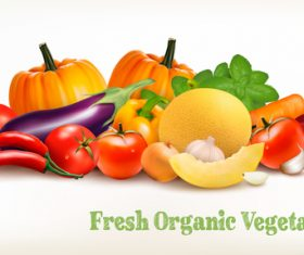 Food background with fresh vegetables vector