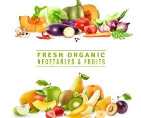 Fresh organic vegetables fruits vector