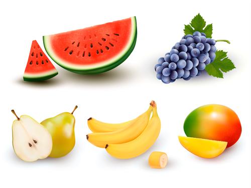 Fresh summer fruits vector