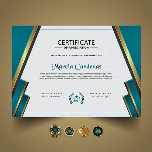 Golden rim decoration certificate vector