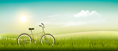 Green grass and bike vector