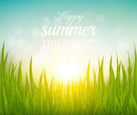 Green grass and light sun vector