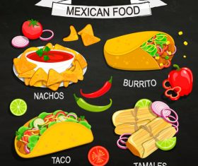 Mexican traditional cuisine vector