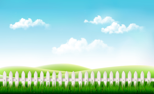Nature background with green grass and blue sky vector