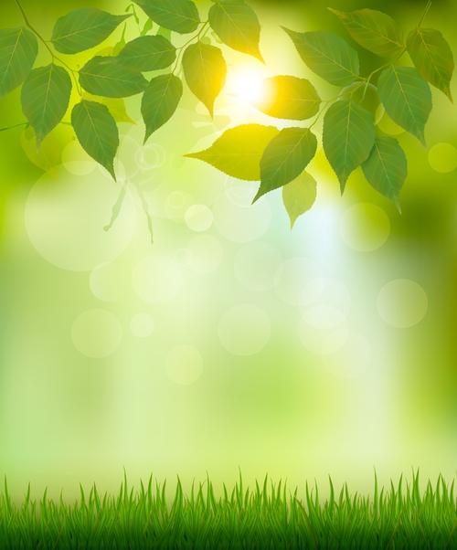 Nature summer background vector