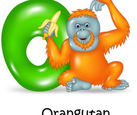 Orangutan and alphabet vector