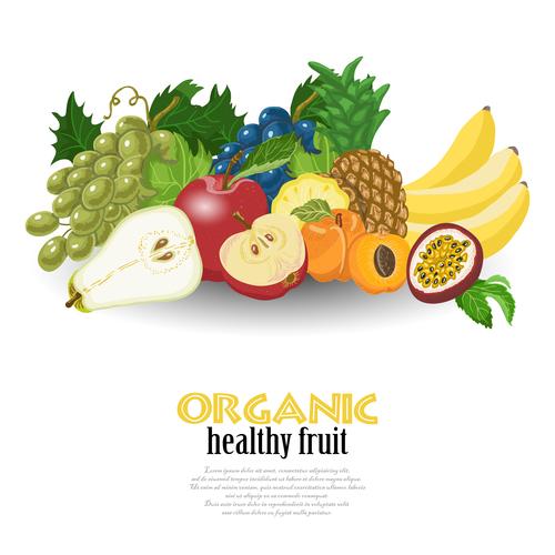 Organic healthy fruit vector