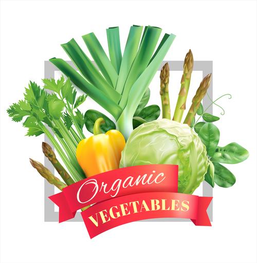 Organic veg frame on white vector