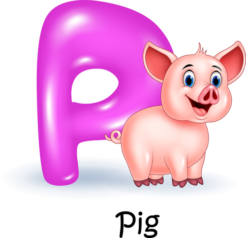 Pig and alphabet vector
