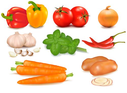 Side dish ingredients vector