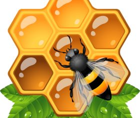 Bee jelly and hornet vector