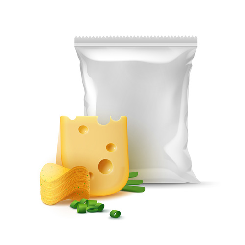 Cheese and green onion vector