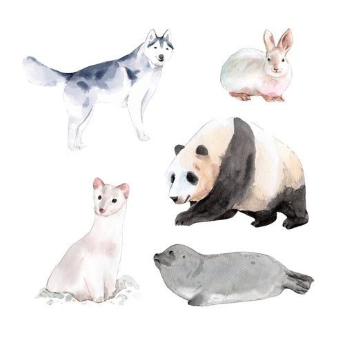 Cute animal watercolor illustration vector