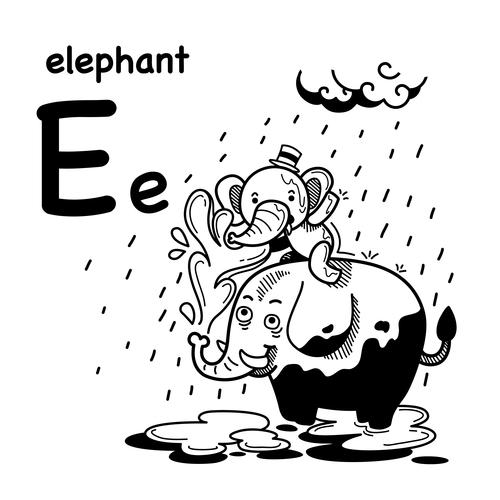 Elephant english word cartoon illustration vector