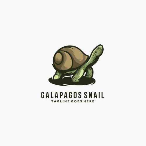 Galapagos snail icon vector