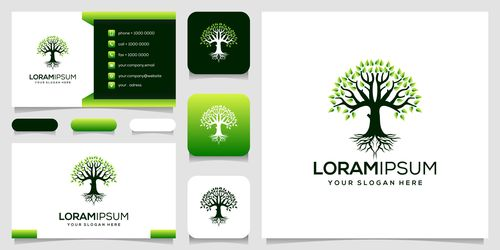 Green cover business card design vector