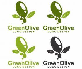 Green olive tree design logo vector