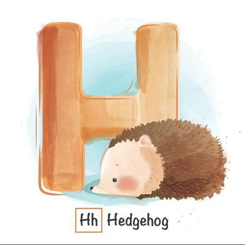 H english word cartoon vector