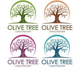 Olive tree design logo vector