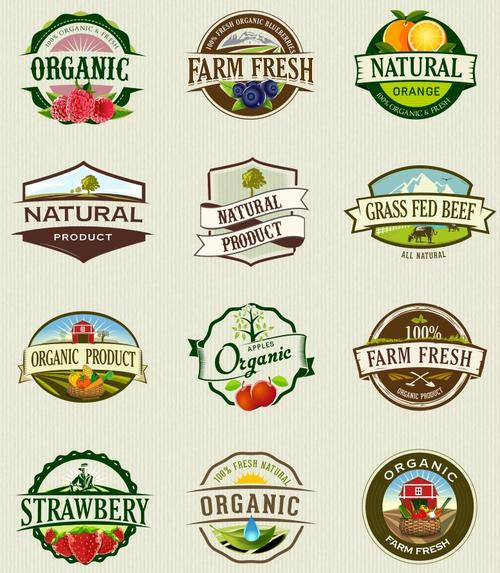 Organic food labels and badges vector