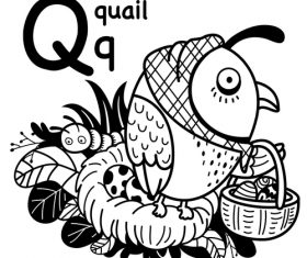 Quail english word cartoon illustration vector
