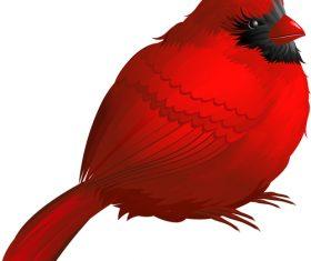 Red bird vector