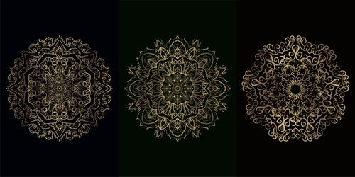 Three beautiful mandala ornament vector