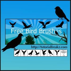 Bird Photoshop Brushes
